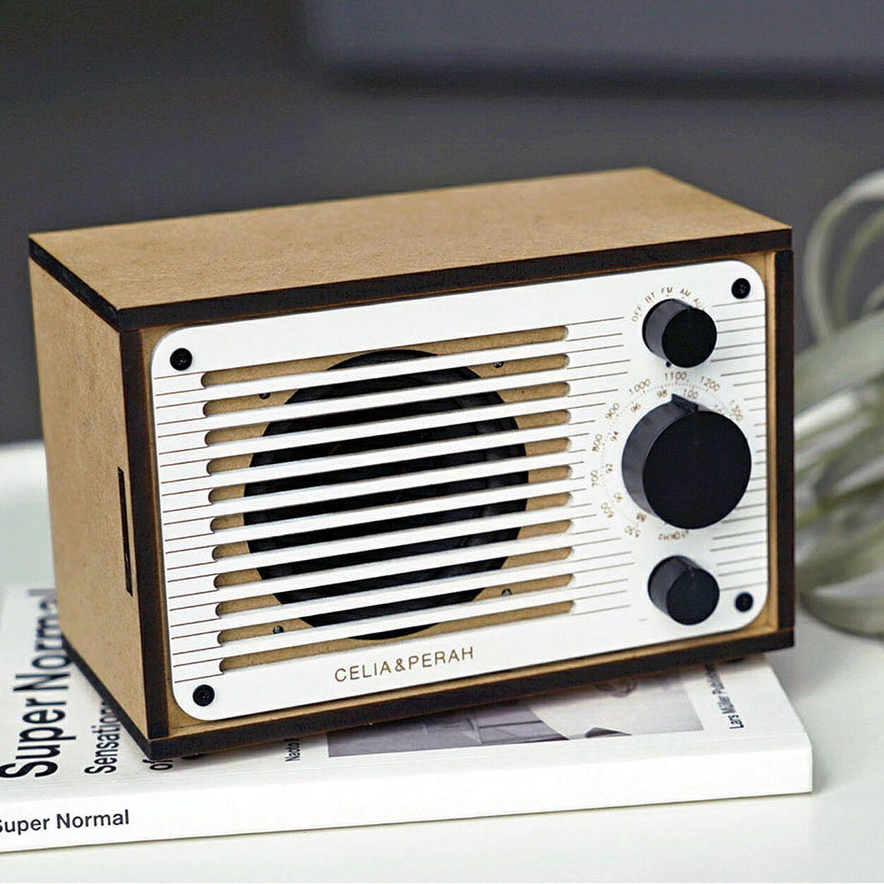 Diy Bluetooth Speaker Fm Radio In 2020 Diy Bluetooth Speaker Radio Radio Kit