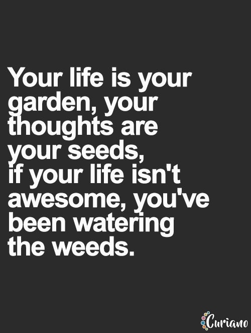 Curiano Quotes Life Quote Love Quotes Life Quotes Live Life Mesmerizing Powerful Love Quotes