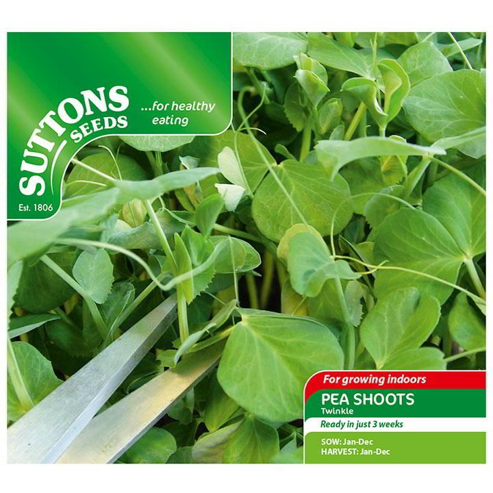 Easy indoor growing sutton seeds sprouting seeds home
