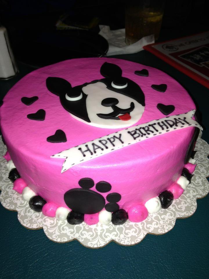Birthday Cake For A Dog Boston Terrier Photo A Reader Got An