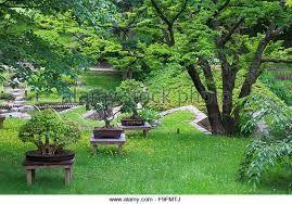 Image result for Albert Kahn Japanese Garden   Japanese ... on Modern Feng Shui Garden  id=67637