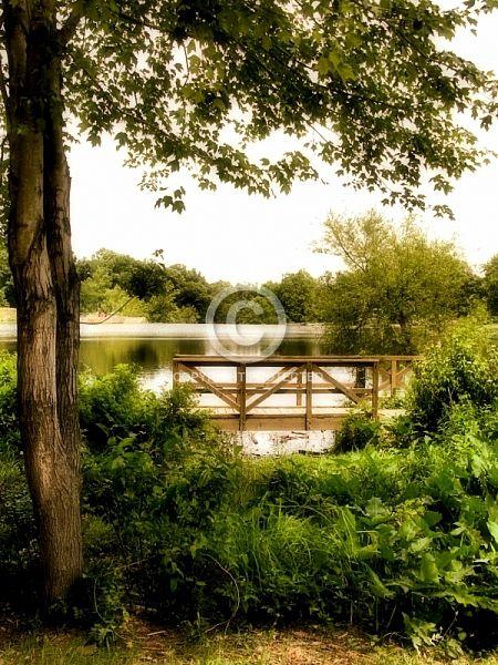 Bridge over lake near Petersburg, VA.