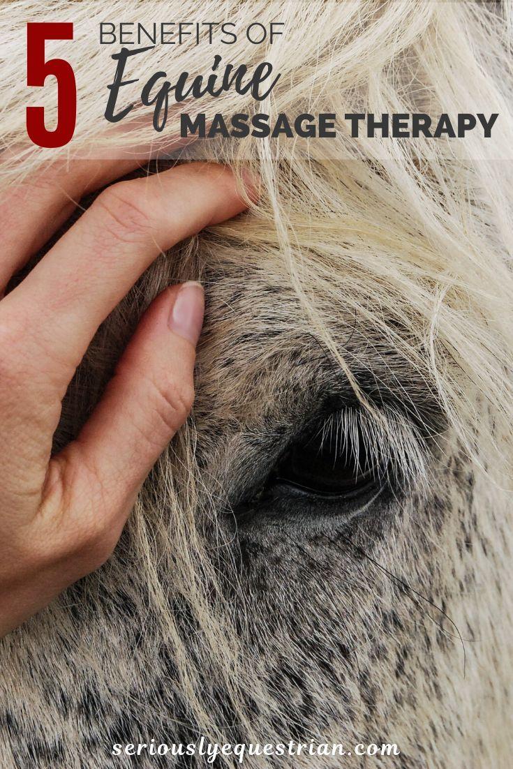 10++ New prague animal care images