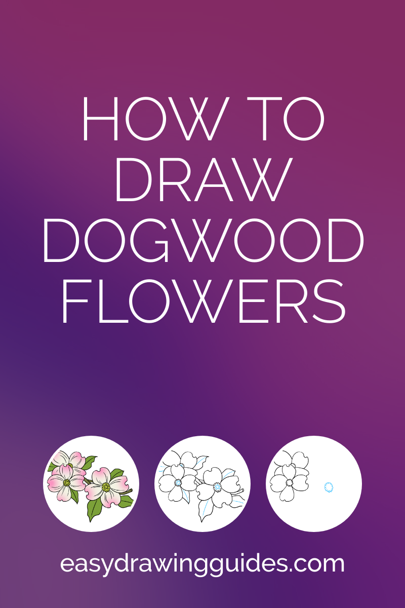 Learn How To Draw Dogwood Flowers Easy Step By Step Drawing Tutorial For Kids And Beginners Drawing Tutorial Drawing Tutorials For Kids Drawing Tutorial Easy