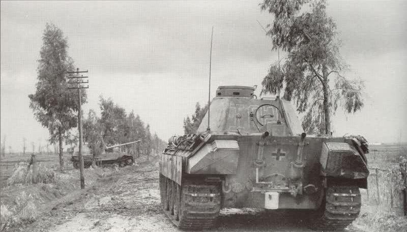 Panther Ausf  D Befehlspanzer, 4th Panzer Regiment, Nettuno