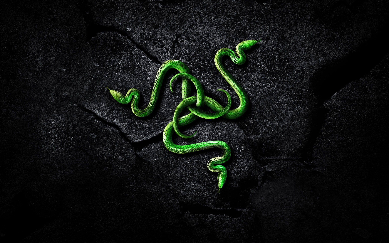 Razer Brand Logo Razer Technology Snake Art 2k Wallpaper Hdwallpaper Desktop In 2021 Snake Wallpaper Gaming Wallpapers Razer