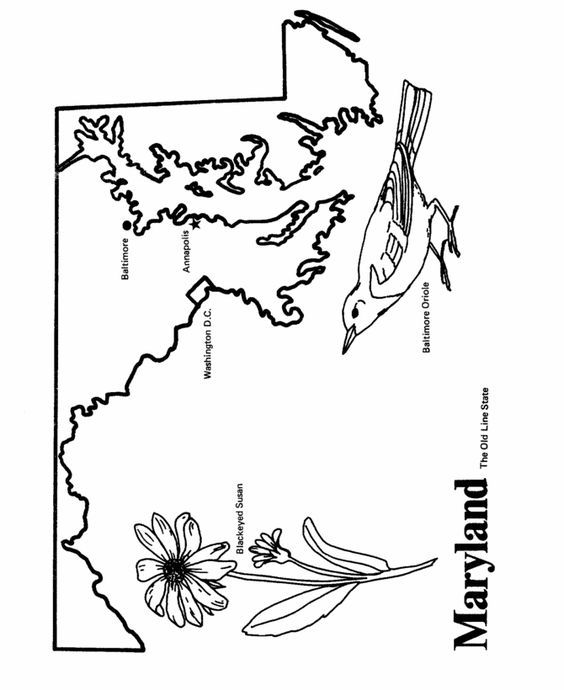 Maryland State Outline Coloring Page State Outline Coloring