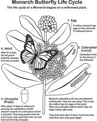 Coloring Sheets to Download | Educational Resources | Pinterest ...