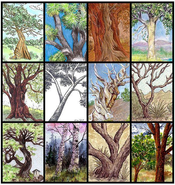 Trees ATCs from illustratedatcs