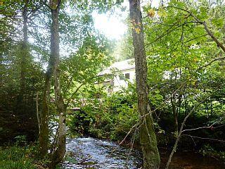 Schwarzwald+total+-+mitten+im+Wald+am+Bach+-+++++++++mehr+Schwarzwald+geht+nicht+++Ferienhaus in Nordschwarzwald von @homeaway! #vacation #rental #travel #homeaway