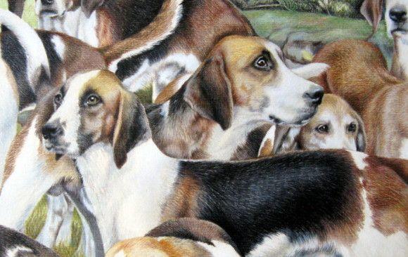 Animal Portrait Gallery Jane Miller Robinson Pet Portraits