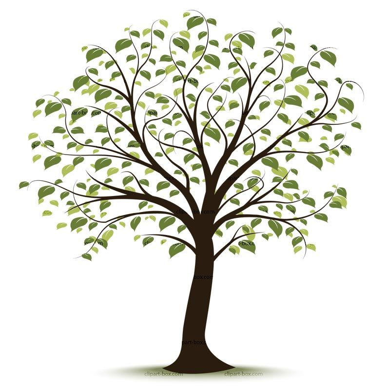 clip art family tree family history event ideas pinterest rh pinterest com free clip art of trees with branches free clipart of tree branches