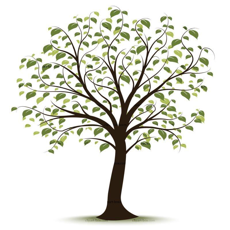 Clip art family tree … | Family History Event Ideas | Pinterest ...
