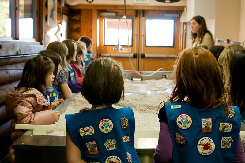 Girl Scouts look on to a river table demonstration.