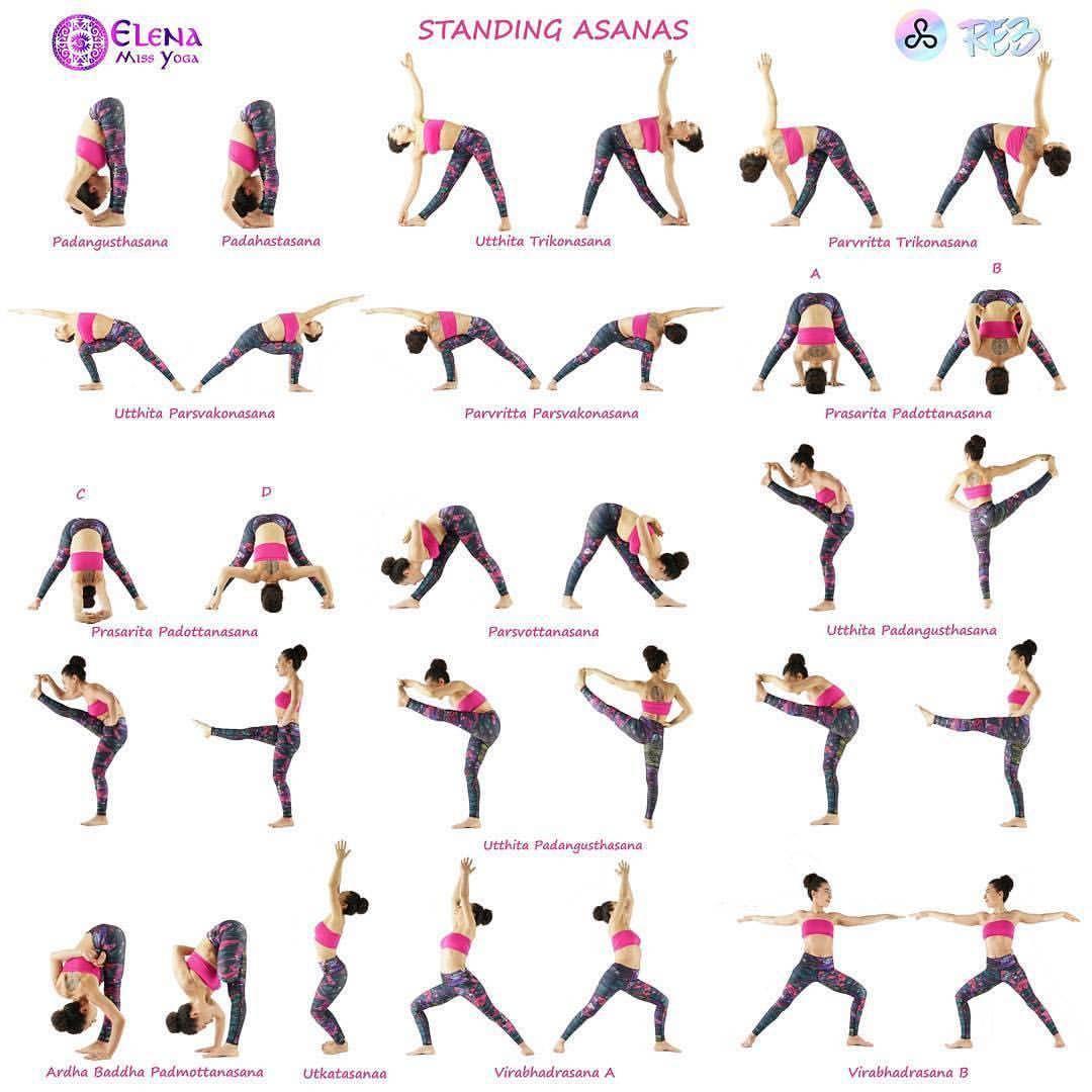 Elena Miss Yoga On So Many Standing Asana Episode 3 0 Ashtangavinyasawithelena Summary Of Ashtangaprimar Vinyasa Yoga Poses Ashtanga Yoga Sequences