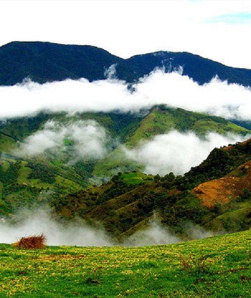 Reencontrarnos con la naturaleza, su preciado clima, sus montañas con neblina, nuestro destino son los Andes Venezolanos. Edo. Táchira