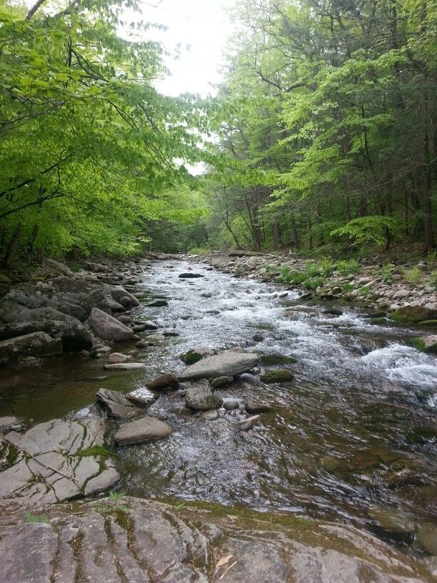 Camping Upstate New York | Background pictures, Fall ...