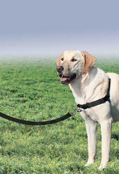 Amazon Com Premier Easy Walk Pet Harness Large Black Silver