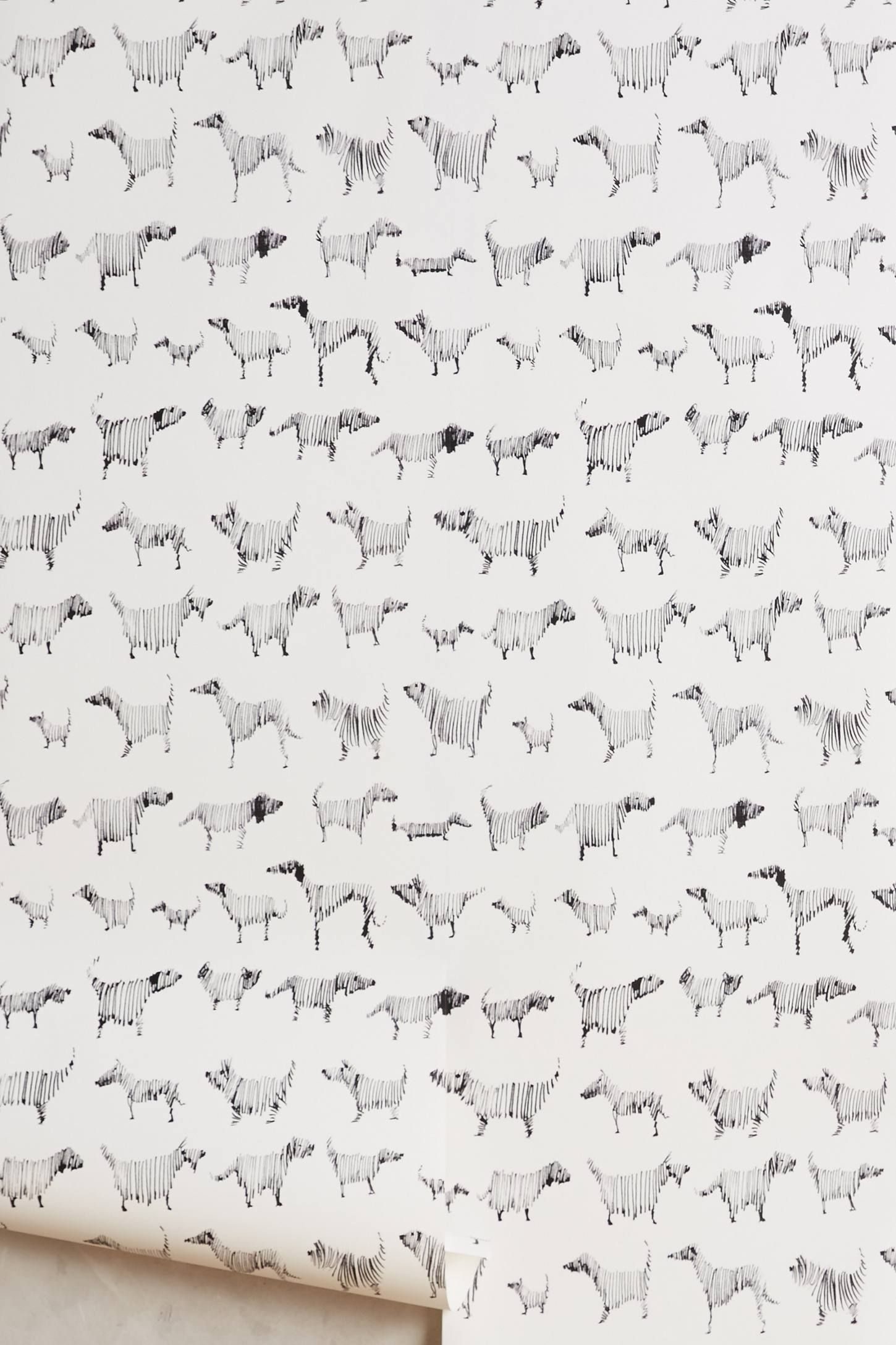 Dog Wallpaper For Walls dog-a-day wallpaper | wallpaper, basements and laundry
