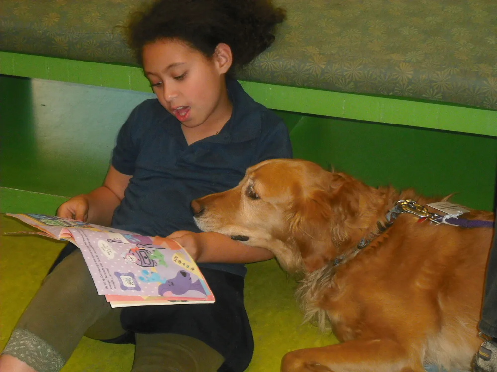 Scientists Improve Childhood Literacy By Making Kids Read To Dogs Inverse Best Dog Breeds Dogs Girl Dog
