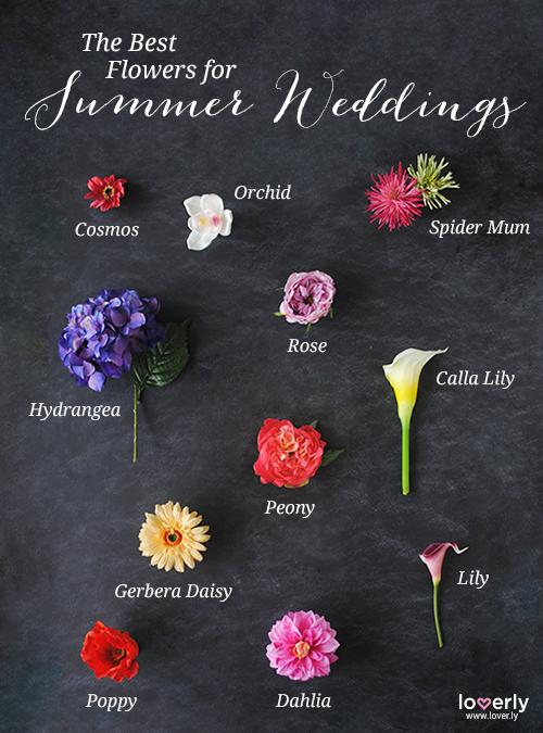Wedding Tip The Best Flowers For Summer Weddings Summerweddings Flowers