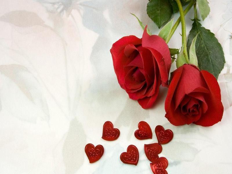ورد وقلوب صور Rose Flower Photos Love Rose Flower Love Rose Images