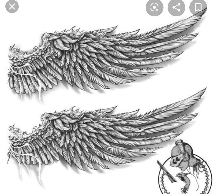 Pin By Fabian Avendano On Drawings In 2020 Wings Tattoo Wing Tattoo Men Tattoo Designs