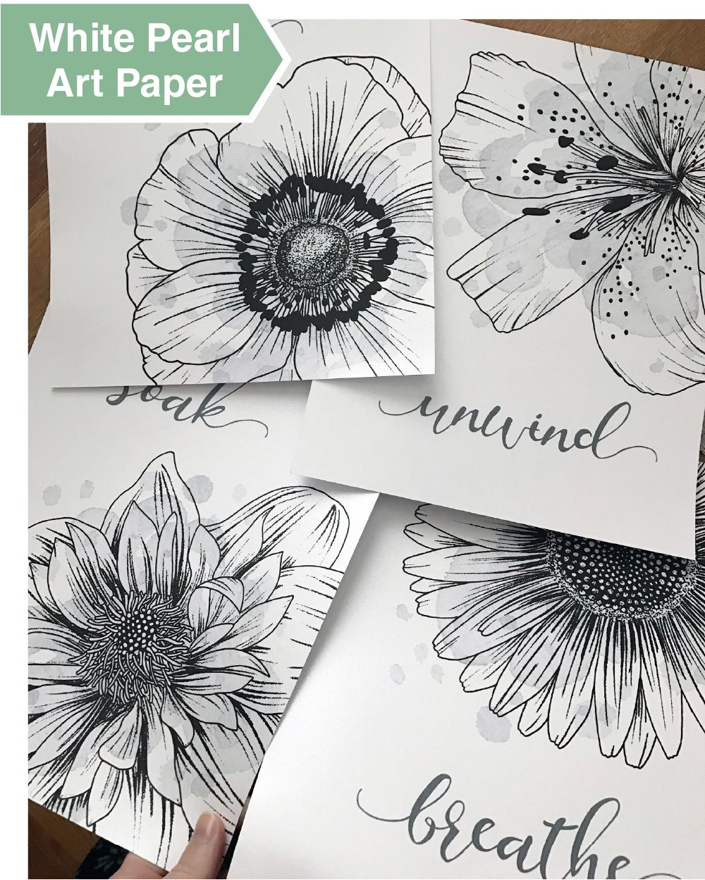 Floral Pictures Bath Decorations - 8x10 Unframed Set of 4 ...