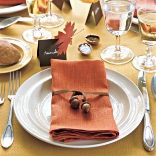 Harvest Napkin Ties and more on MarthaStewart.com