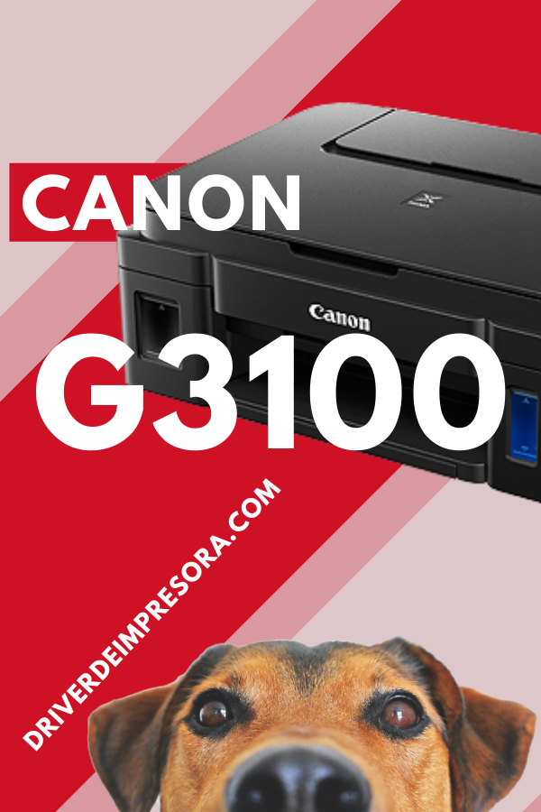 Programa De Instalacion Canon G3100 Impresora Wifi Windows 10 Instalacion