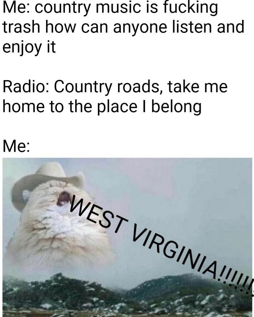 Account Suspended | Country roads, Memes, Inspirational cats