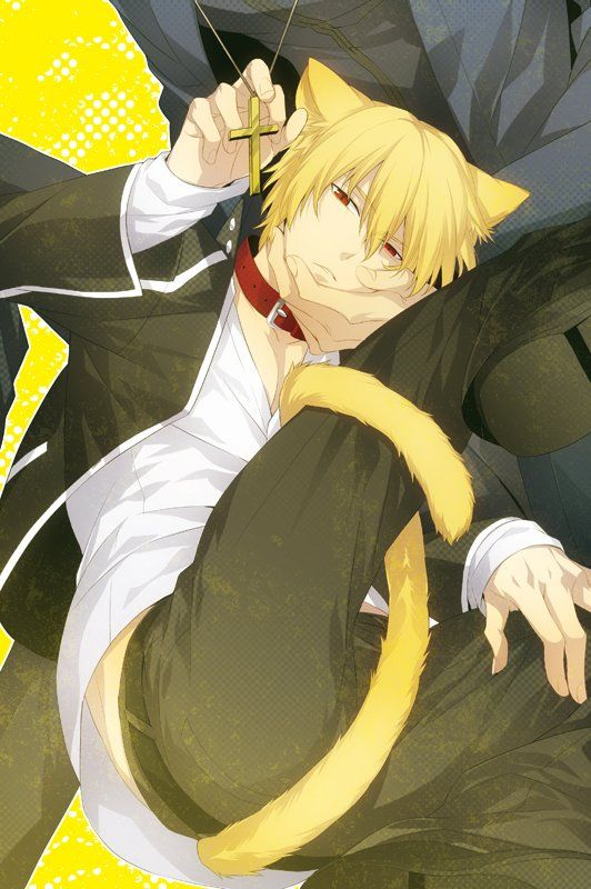 (1) Catboy Bot (@catboys_bot)   Twitter   Anime, Fate stay ...