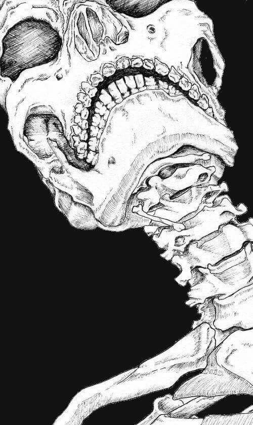 Fondos de pantalla | TRIP | Pinterest | Arte, Anatomía y Craneo dibujo