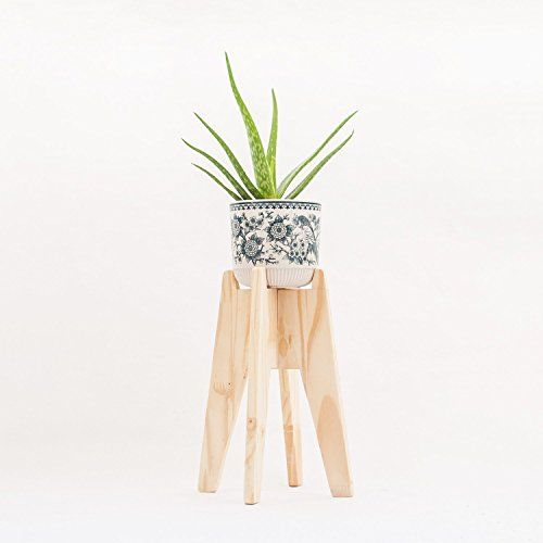 Modern Wood Plant Stand Minimalistic Natural Finish