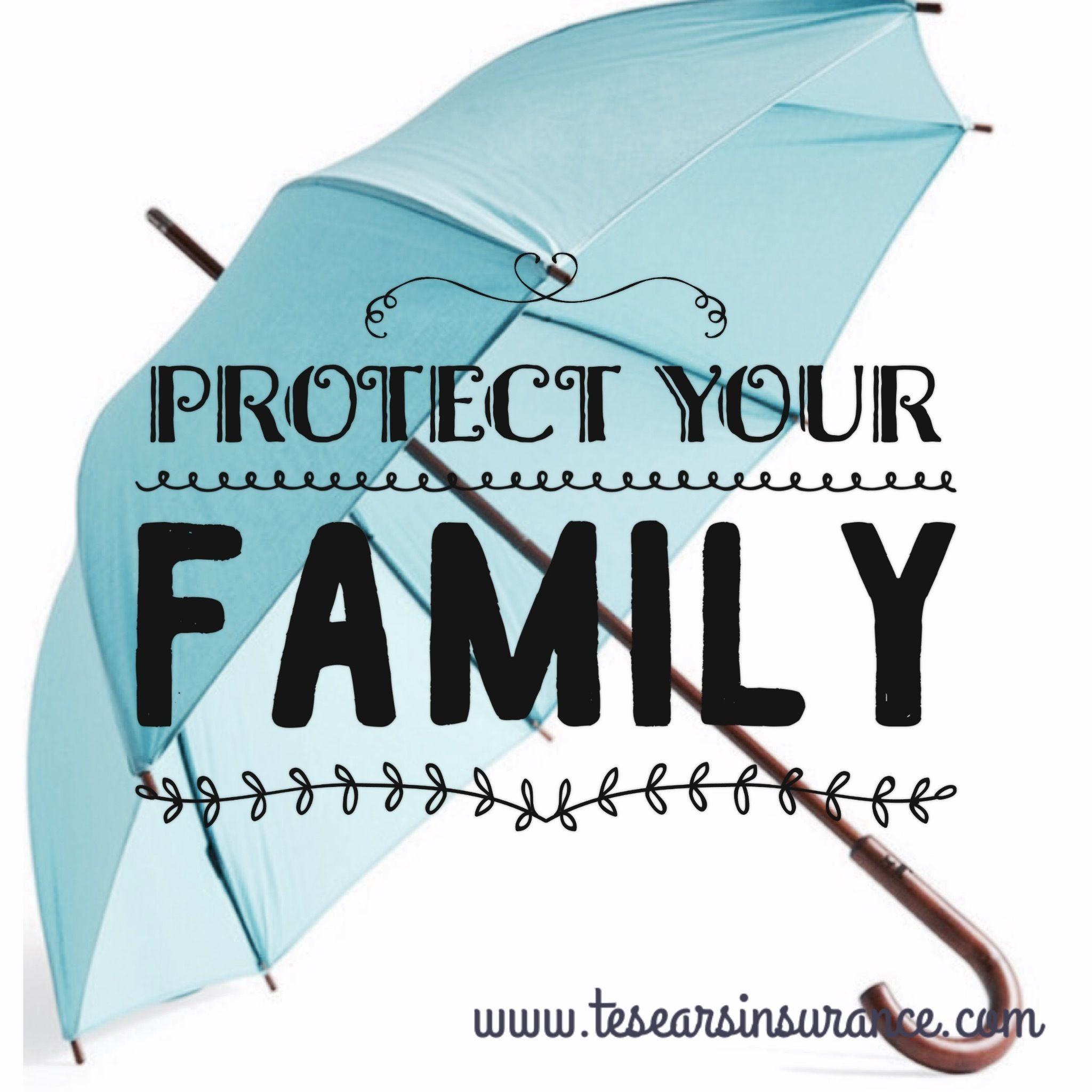 Ma Umbrella Insurance Thomas E Sears Insurance Agency Learn