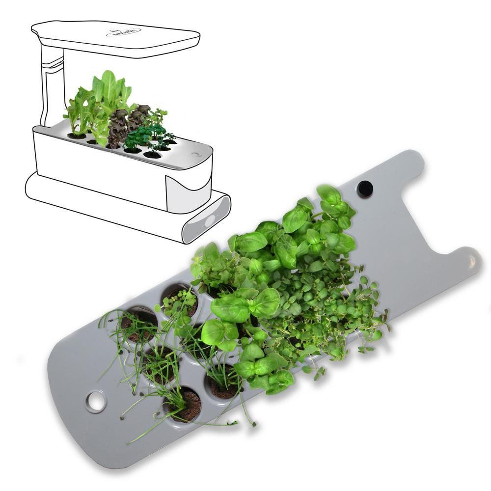 Aerogarden Seed Starting System For Sprout Models Plastic 400 x 300
