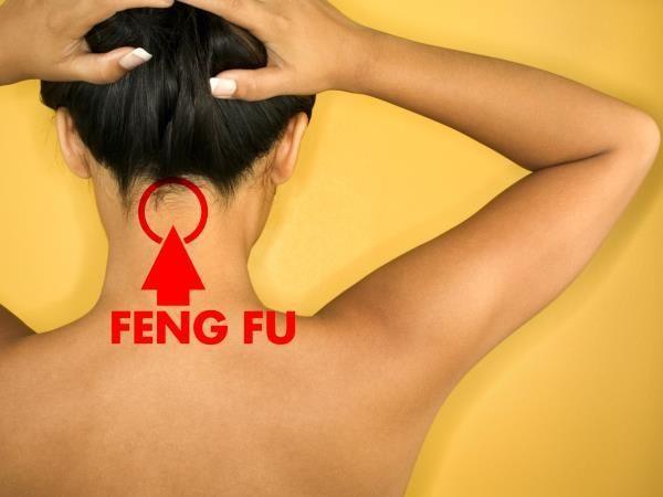 feng fu1