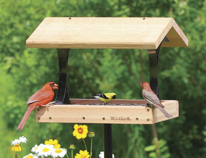 Top 10 best bird feeders design for me for the yard for Bird feeder design ideas