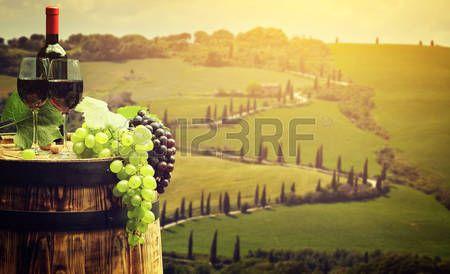 Vino rojo con el barril en la viña en verde Toscana, Italia