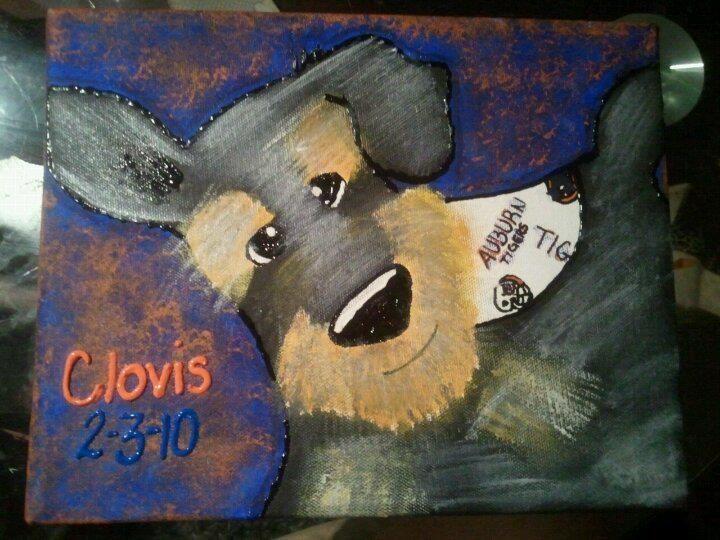 This is my bestfriends dog, Clovis, a miniature Schnauzer.