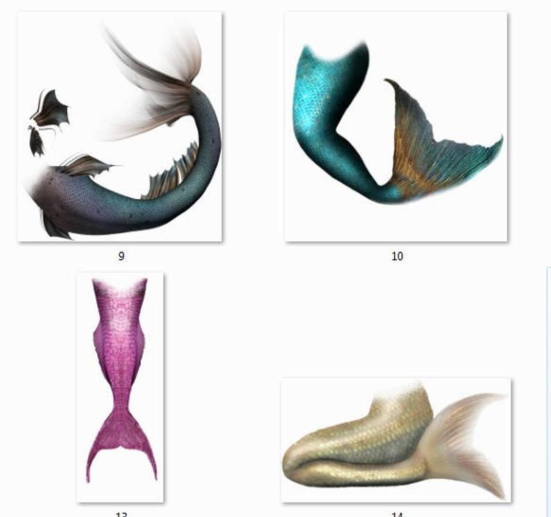 25 Mermaid Tails Png Overlay Photoshop Fantasy Photography Etsy Fantasy Photoshop Fantasy Photography Photoshop
