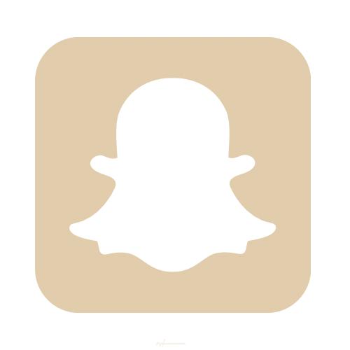 Snapchat Icon Beige Iphone Wallpaper App Wallpaper Iphone Boho Snapchat Icon