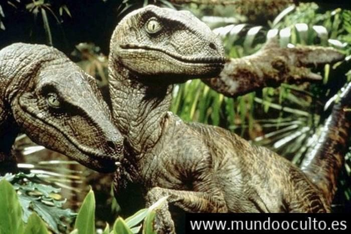 Account Suspended Animales Prehistoricos Dinosaurios Animales Extintos Los animales extintos se reconocen ya que, los mismos la historia de los animales extintos empieza específicamente alrededor de millones de años donde la primera especie de animales que se extinguieron en la tierra fueron los dinosaurios. pinterest