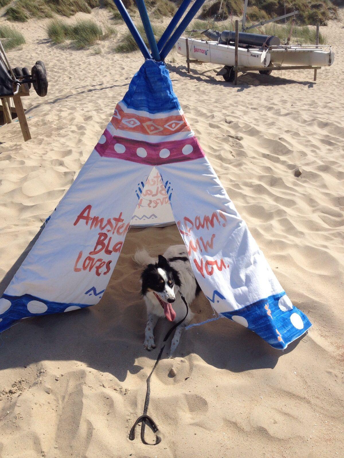 Eb&Vloed hond Wave op het strand van #Vlieland