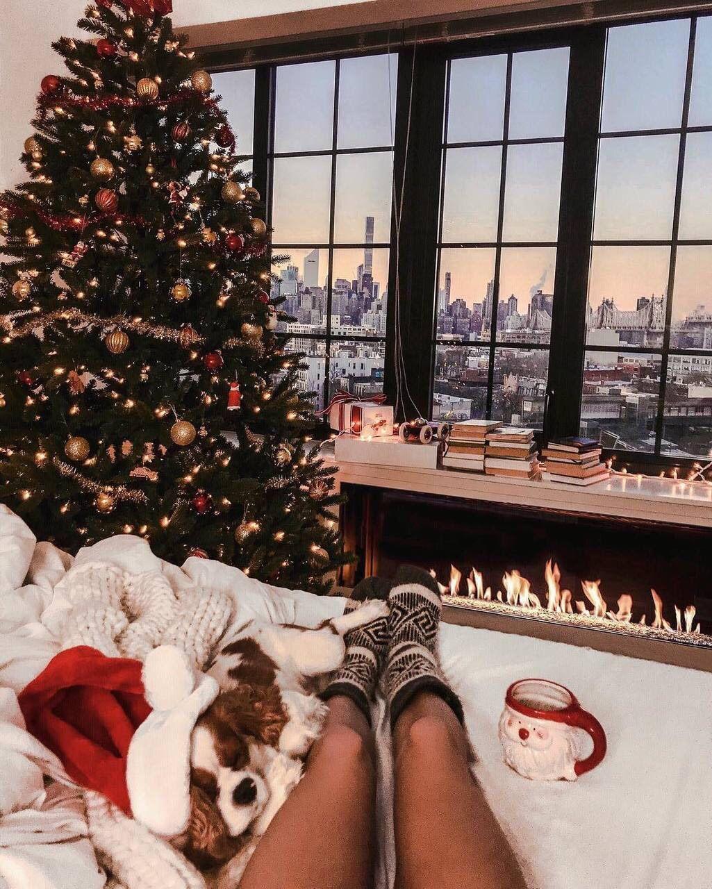 Photo of Se acerca la Navidad Vibraciones navideñas Espíritu navideño alegría Invierno vibraciones nieve sno …