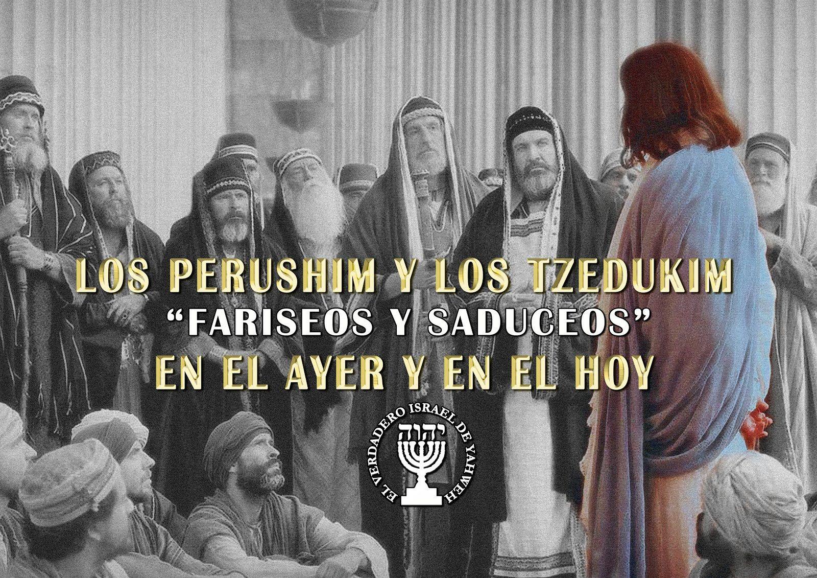 Fariseos Y Saduceos Ayer Y Hoy Con Imagenes Fariseos Libros