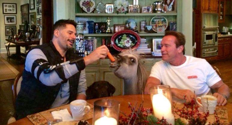 Joe Manganiello and Arnold S. ---12/2014
