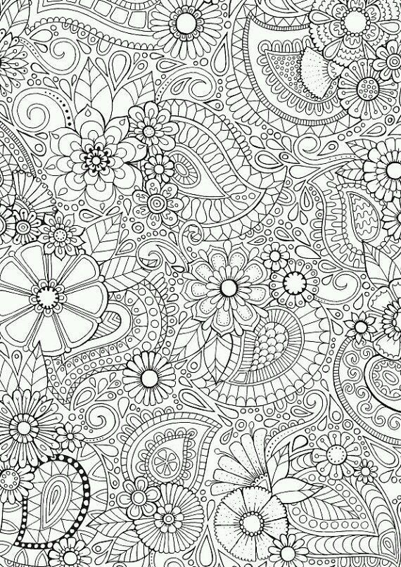 Paisley Blooms Coloring For Grown Ups