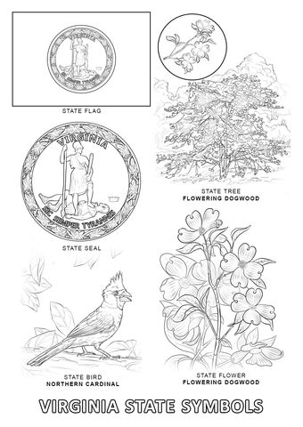 Virginia State Symbols Coloring Page With Images State Symbols