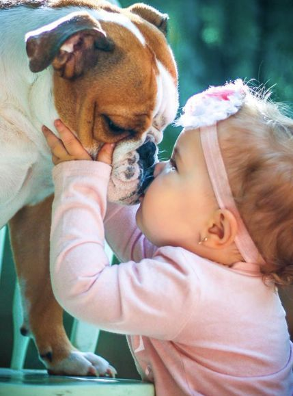 How Do Dogs Choose Their Favorite Person Dogs Kids Cute Baby